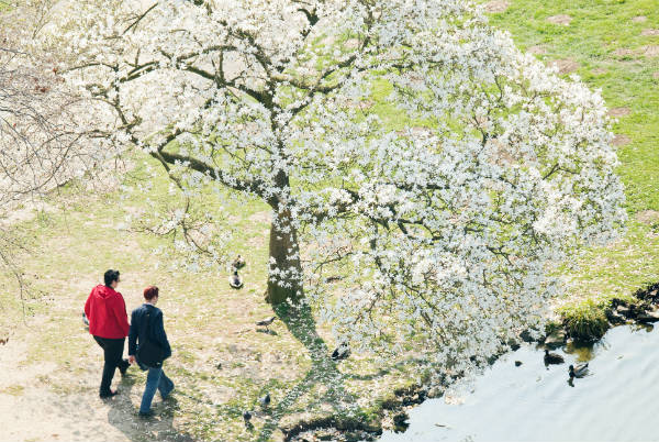Beautiful pictures of Spring from across Germany