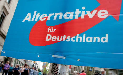 AfD supporters attack activists, journalists in Munich