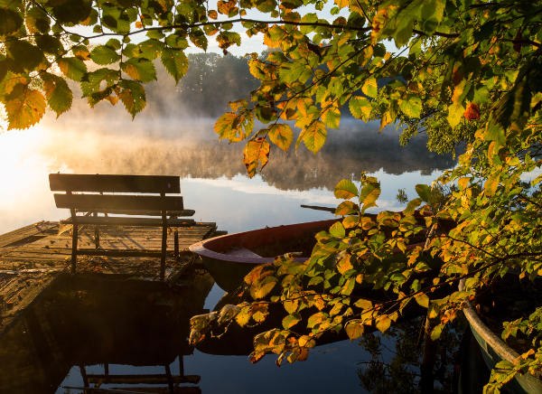 15 pictures that prove Germany is absolutely enchanting in autumn