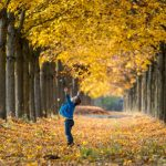 A boy playing with leaves in Straubing, Bavaria.Photo: DPA