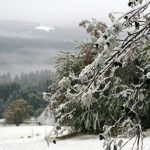 Snow on the Feldberg in the Black Forest.Photo: Photo: DPA
