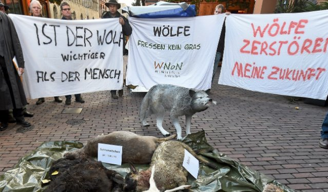 Farmers stage Grimm protest against big bad wolves in Hanover