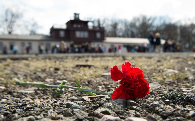 AfD politician banned from Holocaust memorial after Nazi comments