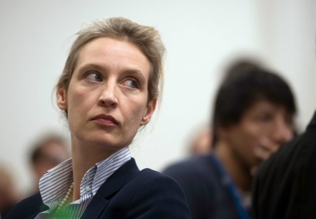 'Merkel is insane': meet the woman leading the AfD into the elections