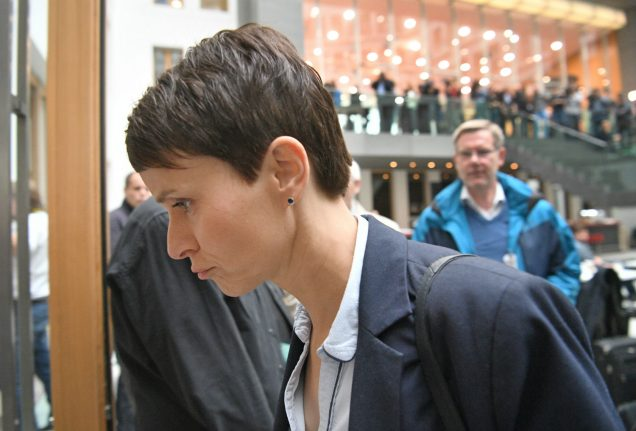 AfD leader Petry causes storm by announcing split from parliamentary party