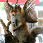 This final Wolpertinger comes from Mittenwald in Bavaria and seems almost normal in comparison to some of the other examples of its kind. It has the body of a fox, the wings of a duck, the horns of a deer and what may seem at first glance to be an ornate e-cigarette, but is, in fact, a pipe. Photo: DPA