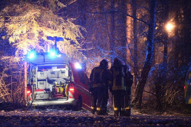 Three die as small plane crashes in bad weather in southern Germany