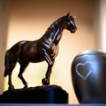 Candles and music: Germany's first horse crematorium to give equines worthy farewell