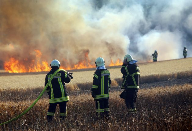 Fried chicken: bird catches fire on rail wire and sets field ablaze