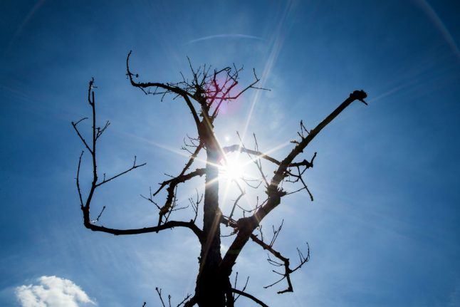 After mini-break, heatwave to come back in full force