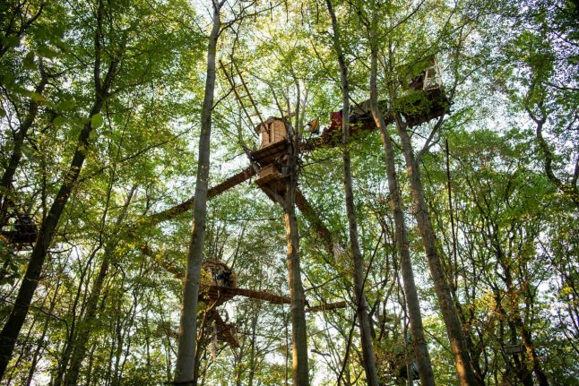 Operation to evict Hambach Forest activists suspended after tragic death