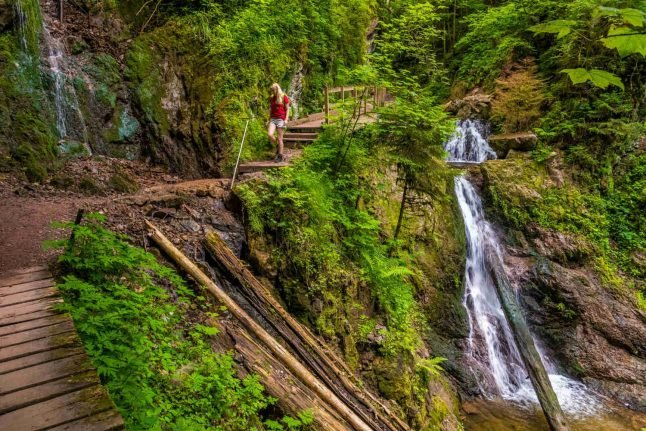 Wandervogel: How to get back to nature and embrace the wilderness like the Germans