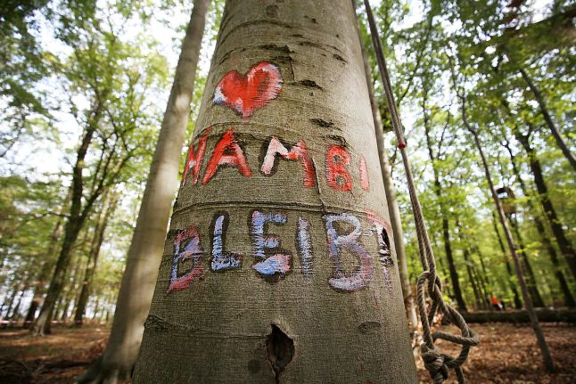 German court blocks energy giant from razing forest near Cologne
