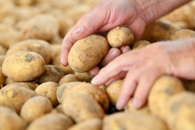 Drought causes potato prices to rise by more than half – and they have more flaws