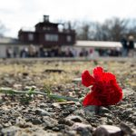 AfD banned 'indefinitely' from attending Holocaust memorial services