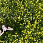 Pollen at 'unusually high levels' amid early spring in Germany