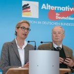 AfD support falls to lowest level in a year, poll finds