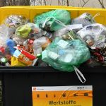 How activists are battling German food waste with illegal dumpster diving