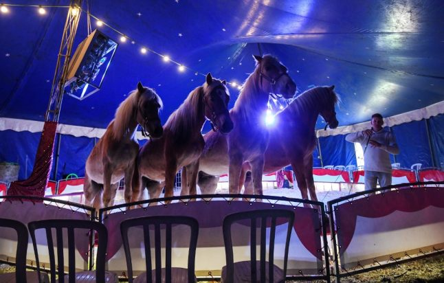 Stranded German circus faces uncertain future due to coronavirus restrictions