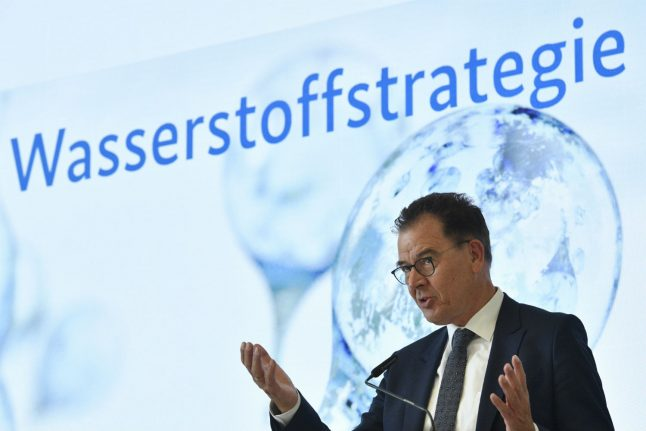 Renewable energy: Germany aims for 'world number one' spot in green hydrogen