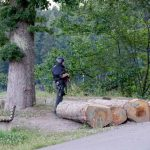 German police search for armed man on the run in Black Forest