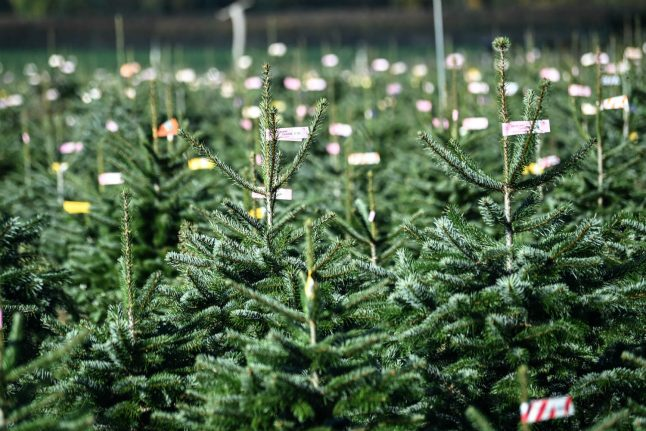 How will Christmas 2020 be celebrated in Germany?