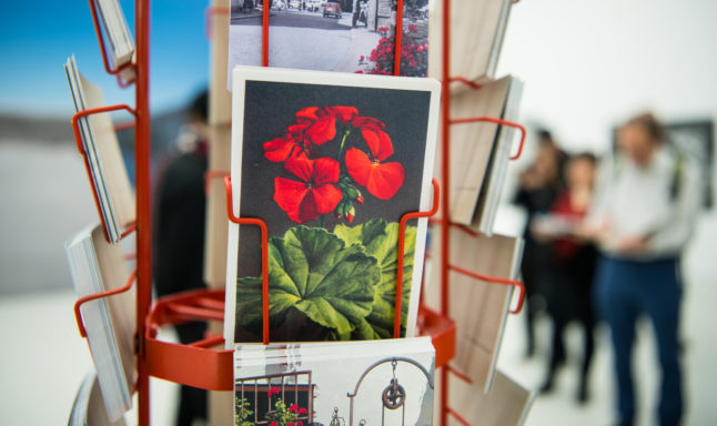 'Wish you were here': Postcards help Germans connect in pandemic