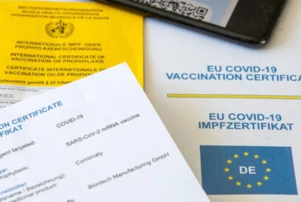 'Makes life easier': What foreigners in Germany think about the new digital vaccine pass